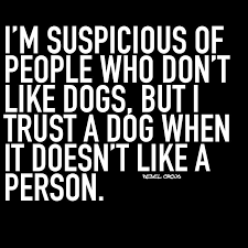 Image result for dog quotes trust