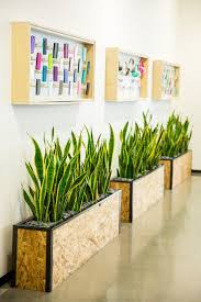 office planter. Custom Planter Boxes For Lobby Of Corporate Office Made By Feruxe P