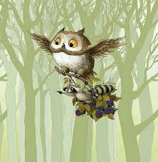 Pin by Belinda Rosenberg on Owls | Owls drawing, Owl, Owl pictures