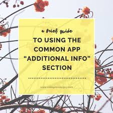 "a brief guide to using the common app ""additional information  a brief guide to using the common app ""additional information"" section college essay guy get inspired"
