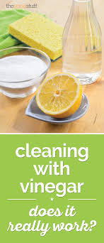 Cleaning with Vinegar  Does It Really Work? | thegoodstuff