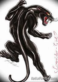 черно белый эскиз тату с черной пантерой 11032019 005 Tattoo