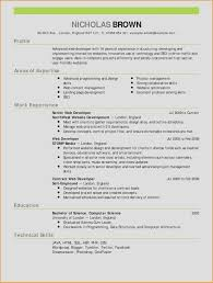 Sample Accountant Resume Luxury 24 New S Accountant Resume Samples ...