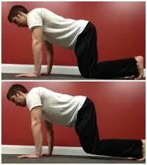 plank horse plank core strength