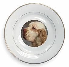 clumber spaniel dog gold leaf rim plate n gift box