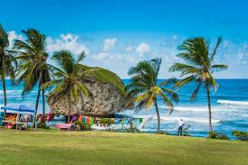 Image result for Summer Trekking In Barbados