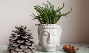 55 Unique Planters and Cool Pots For All House Plants