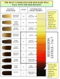 Hair Color Wheel Chart Shades Eq Color Wheel Bing Images Hair Color Hair Color