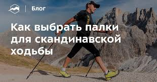 Как выбрать <b>палки для скандинавской</b> ходьбы — Блог «Спорт ...