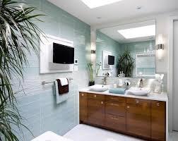 glass wall bathroom