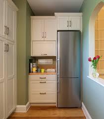 Best Cabinet Depth Refrigerator Irastarcom Home Interior Ideas And Designs
