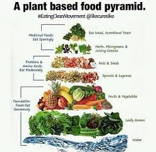 Plant Based Diet Chart Plant Based Food Pyramid In 2019 Vegan Food Pyramid Vegan