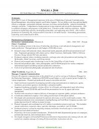 Mis Officer Sample Resume Complex Mis Manager Resume Objective Mis Executive Resume Sample In 23