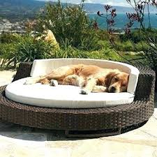 diy outdoor dog bed outdoors wicker pet would come close to fitting both my just indoor