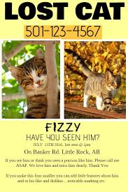 Lost Pet Flyer Maker Lost pet flyer template Lost Pet and Pet Adoption Flyers Pinterest 37