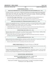 Sales Resume Samples Example Sales Resume For Sales Executive Sales