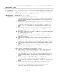 Resume For Senior Manager Free Resume Example And Writing Download