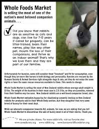 Selling Flyers Posters And Flyers From Hrs And Our Partners House Rabbit Society