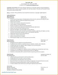Sample Valuation Report Fascinating Business Valuation Report Template Worksheet Flybymediaco