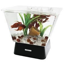 Fish Tank Amazoncom Tetra 29050 Led Betta Tank 1 Gallon Aquariums