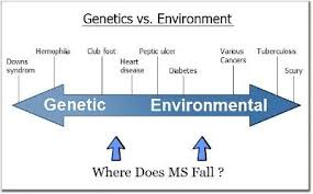 image gallery nature vs nurture diagram