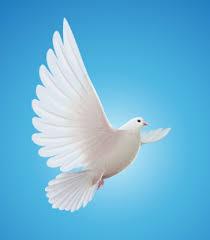 Connie Griffith Obituary - LaGrange, GA | Higgins LaGrange Chapel