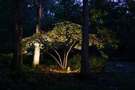 japanese outdoor lighting. Augusta Tree Lighting For Magic And Elegance Japanese Outdoor T