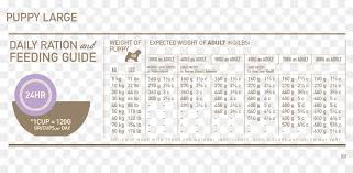 Orijen Puppy Feeding Chart Dog And Cat Png Download 900 423 Free Transparent Puppy