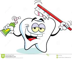 Dent Avec Une Brosse Dents Photographie Stock Libre De Droits