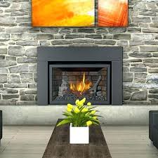 gas fireplace inserts reviews napoleon gas fireplace inserts napoleon gas fireplace inserts reviews best gas insert