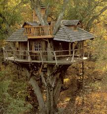... Large-size of State Adults Photo Tree House Kits As Wells As Your House  Its ...