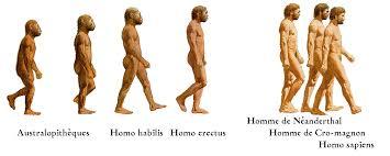 recherche des hommes prhistorique