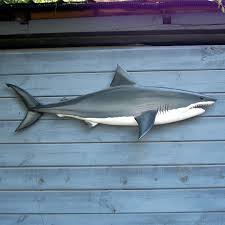 Shark Bedroom Decor Coat Hook Wall Mounted With Funny Cartoon Design For Unique Ron A