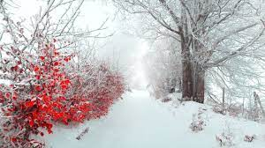 56+ Winter Desktop Wallpapers on ...
