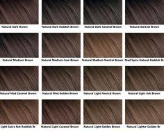 10 Best Brown Hair Chart Images Brown Hair Chart Hair