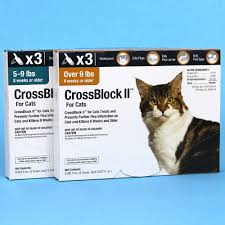 imidacloprid for cats. Simple Cats CrossBlock II For Cats Treats And Prevents Fleas Inside Imidacloprid L