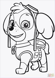 Free Paw Patrol Coloring Pages Or Paw Patrol Rocky Ausmalbilder