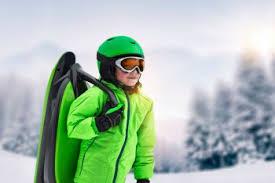 <b>Снежный балансир</b>-дрифтер <b>Gismo Riders</b> Ski-Drifter - купить в ...