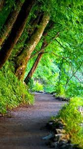 Nature Green Wallpaper For Android ...