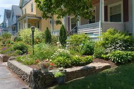 no mow garden design