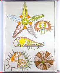 Starfish Chart Starfish Wall Chart By Dr Lip For Gerhard Gambke 1969
