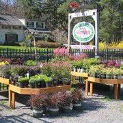 garden store morristown nj. we carry glazed photo of country mile gardens - morristown, nj, united states. garden store morristown nj t