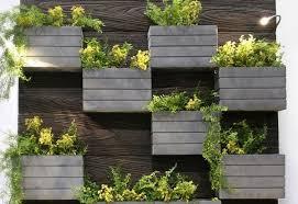 creative living wall planter ideas