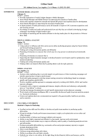 Media Resume Examples Media Analyst Resume Samples Velvet Jobs 25