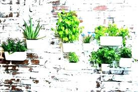 wall planter ideas wall planter ideas wall planter ideas hanging herb planters large hanging herb pots
