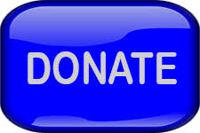 Image result for web donate button