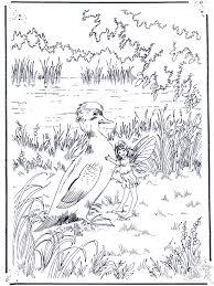 Eendje En Een Elf Kleurplaten Vogels