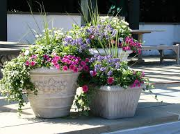 Small Picture Easy Flower Pot Ideas for Garden Home Designs Lovely flowers