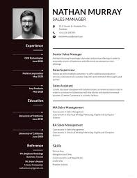 Resume Templates For Publisher 12 Cv Templates For Job Application Pdf Psd Doc Ai