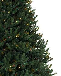 Amazoncom Set Of 2 MultiColor LED Lighted Outdoor Spiral 4 Christmas Trees
